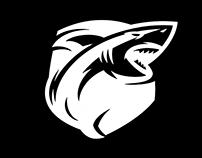 Estúdio Shark