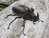Three-Horned Beetle Illustration