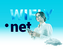 WiFly. Corporate website for IT company.