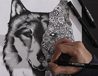 Animal Series:Wolf