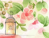 Animation, Perfume