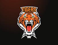 Sports Logo Concept