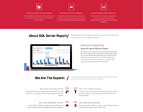 Web design  SQL server reporting services