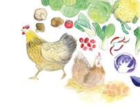 Wholesun Organic Farm