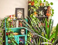 Ambientação com plantas