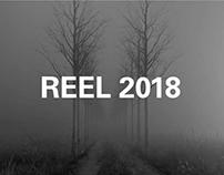 Trizz Reel 2018