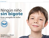 """INTERACTIVE WEB PORTAL """"Obra Social La Caixa"""""""