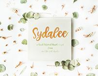 Sydalee Script Font
