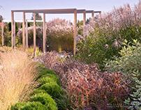 POZNAŃ | ogród traw