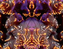 Chroma Pt. II
