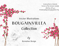 BOUGAINVILLEA Vector Illustration Collection