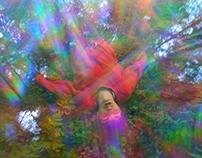 Norwegian Rainbow Shower