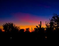 Digital Photography - Desert Botanical Gardens