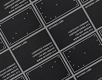 Intorno Labs Branding