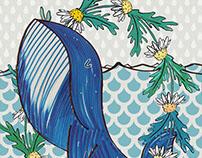 Daisy whale