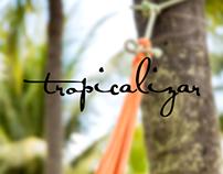 Coleção Tropicalizar