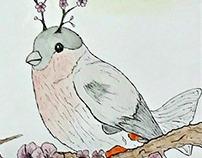 Hybrid: Cherry Blossom Koi Finch