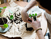 IKEA & Urban Jungle bloggers collaboration