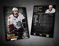 Chicago Wolves 2014-15 Trading Cards