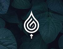 Hayat | Rebranding