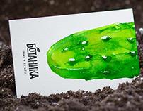 Ботаника — нейминг + брендинг + полиграфия + сайт