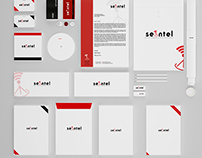 Branding - Seintel
