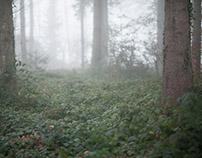 Wald und Bäume