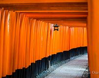 Orange Kyoto