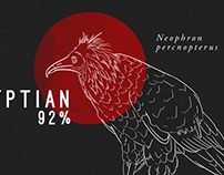 Vultures In Decline Infographic