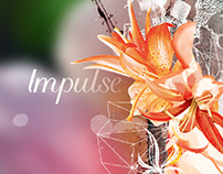Impulse Love Notes Campaign
