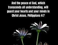 Peace comes from God daily meditations.