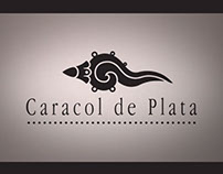 Caracol de Plata 2011 Awards opener