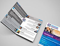 Roraima Strategic Consulting - Flyers & Mockups