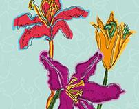Spring dresses in the Summer Time: Illustration