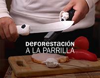 Deforestación A La Parrilla