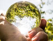Glass + Nature