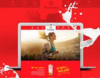 Criação da Interface do novo site Piracanjuba