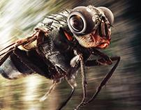 Samsung Gear360 Camera | Fly | Poster & OOH
