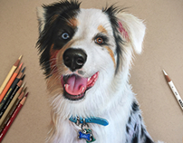 "Colored pencil ""Loki"""