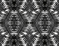 Rainforest Patterns, Extended Edition