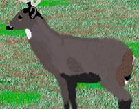 Photoshop deer (old)