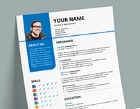 Bayview - FREE Resume template