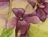 Lilies Watercolour