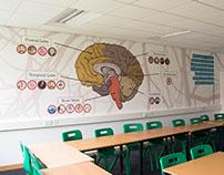 Psychology Classroom Design