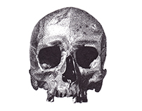 Skull Drawing | Personal Project