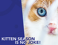 RSPCA Advertising Posters