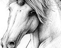 Creepy Weirdos, Sweet Maniacs & a Unicorn