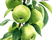 Apple watercolor pattern