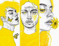 The Yellow Series III