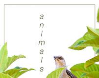 Animals 2018